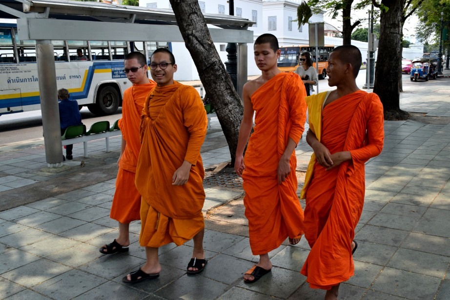 самуи монах