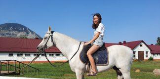 терский конный завод экскурсия